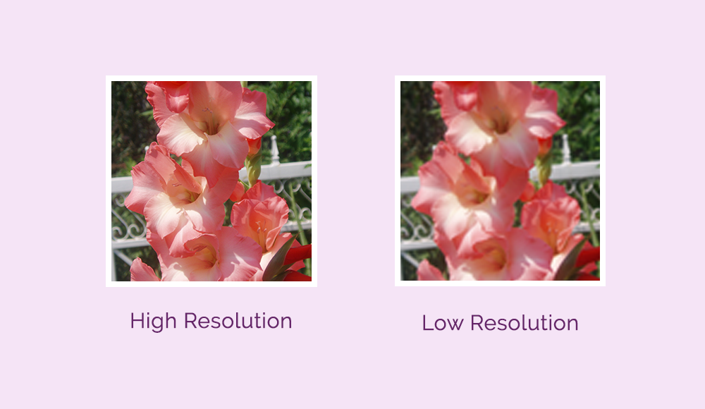 High Resolution Vs. Low Resolution Image - dchristinedesign.com